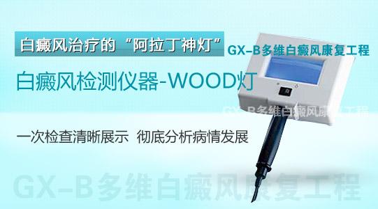 白斑(白癜风)检测仪器-WOOD灯